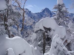 11年2月硫黄岳 059