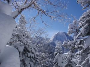 11年2月硫黄岳 061