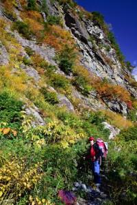 000_0332  黒部川は紅葉が綺麗 jpg