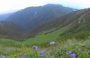 12荒川岳から南面に赤石岳を臨む